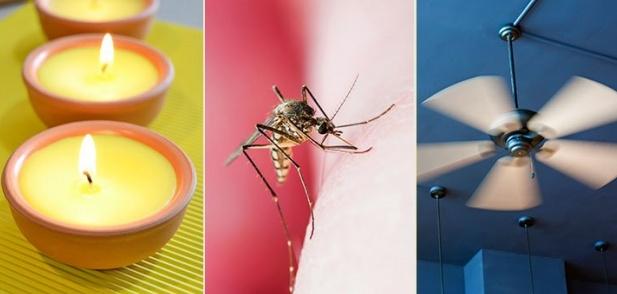Как да предотвратите ухапванията от комари?