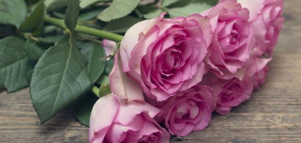 Значението, което стои зад популярните цветя, подарявани за Свети Валентин