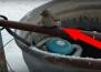 Човек намира птиче със замръзнали върху метална тръба крачета.