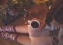Защо Исландците прекарват всяка Коледа в четене на книги и пиене какао