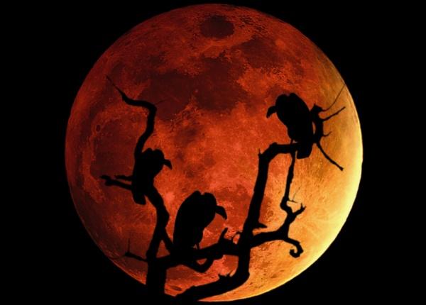 По-дълбокият смисъл на пълната луна този месец