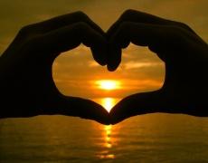 Икономиката на сърцето