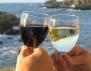Редовното пиене на алкохол не вреди
