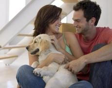 5 причини ти и гаджето да си вземете кученце