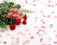 Едно цвете и е твоя!
