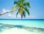 Да се живее край морето е полезно! Много полезно…