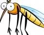 Някои мерки при ужилване от насекоми