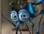 Как да се отървем от досадните комари?