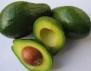 Авокадото ни подмладява