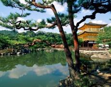 Какъв си ти според японския хороскоп? (Част 1)