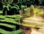"""Нови книги: """"Забравената градина"""" на Кейт Мортън"""