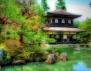 Каква е твоята японска зодия? (Част 2)