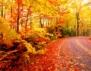 Честита първа есен!