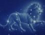 7-те принципа на всяка зодия: Лъв