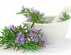 За по-добра памет и концентрация вдишвайте аромат на розмарин