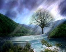 7 неща, които Бог няма да те попита…