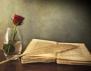 За знанието и мъдростта в цитати