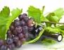 За по-добър сън, хапвайте грозде